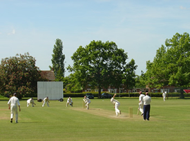 Little Bardfield Cricket Club